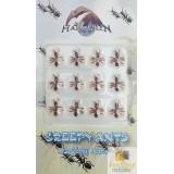 12 li Mini Karıncalar