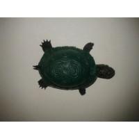 Şaka Kaplumbağa Kaucuk
