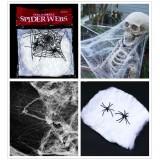 Örümcek ağı ve ör�...