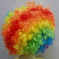 Palyaço Renkli Peruk Saç