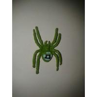 Renkli Tropikal Örümcekler