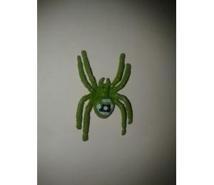 Böcek ve Hayvanlar - Renkli Tropikal Örümcekler